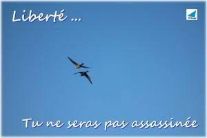 liberte-DSCF4135-mr