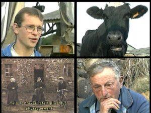 1996-mm-sur-le-plancher-des-vaches-vign